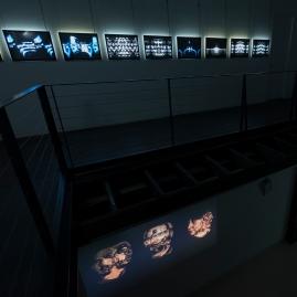 transimmanence-gallery